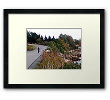 The Cyclist Framed Print