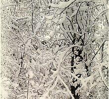 Winter's First Work 09 by Fareday