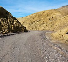 Mustard Canyon Road by Nickolay Stanev