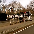 Horse Carriage by MPICS
