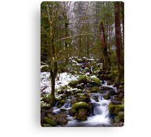 Haystack Creek, winter snow Canvas Print