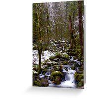Haystack Creek, winter snow Greeting Card