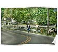 Bicycle Ride in Amish Country Poster