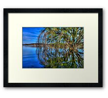 One Willow Framed Print