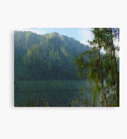 "Mountain Shade  (2009)   - 24""x18"" max print size Canvas Print"