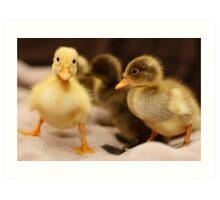 Yella Duckie Art Print