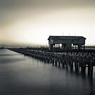 Princes Pier  by Christine  Wilson Photography
