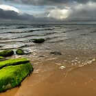 Even the rocks wear jumpers up here by Craig S. Sparks