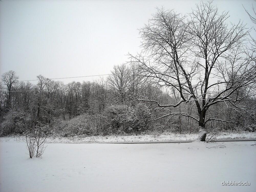 Snowy Front Yard by debbiedoda