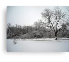 Snowy Front Yard Canvas Print