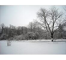 Snowy Front Yard Photographic Print