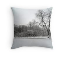 Snowy Front Yard Throw Pillow