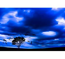 Blue Fantasy Photographic Print