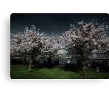 If Wishes Were Trees Canvas Print