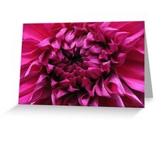 Dahlia Heart Greeting Card