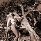 Young Girl_Old Tree by Carnisch