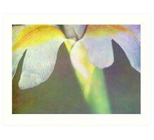 Iris Palm Art Print