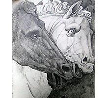 Horse sculpture Photographic Print