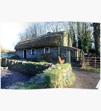 Irish thatched cottage Poster