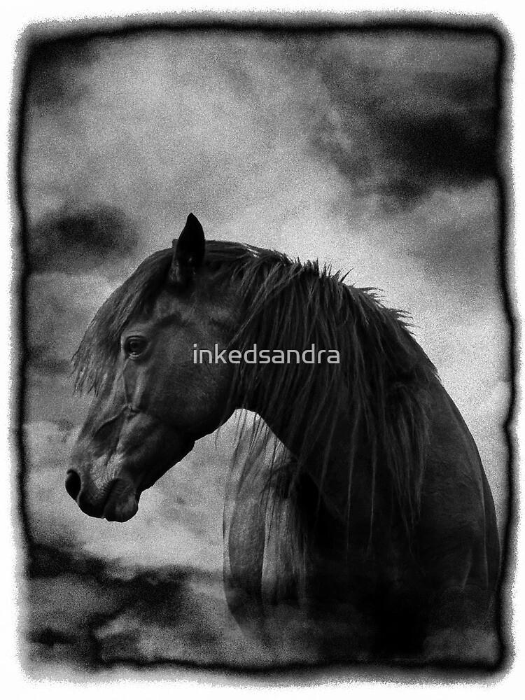 At night I dream of horses by inkedsandra