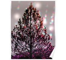 mother natures christmas tree Poster
