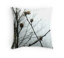 Winter Buds Out The Window Throw Pillow