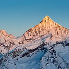 Weisshorn at sunrise by peterwey
