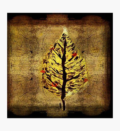man and christmas tree Photographic Print