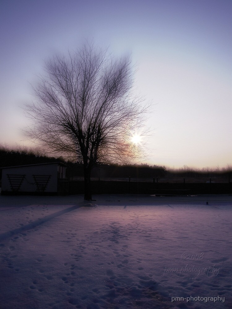 Winter Sun by pmn-photography