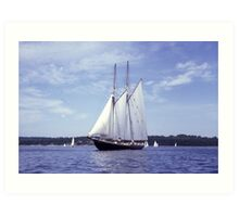 Bluenose 2 -Halifax Harbour Art Print