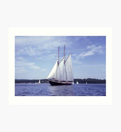 Bluenose 2 -Halifax Harbour Art Print