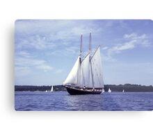 Bluenose 2 -Halifax Harbour Metal Print