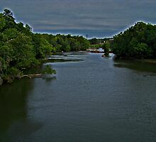Saluda River II by Ellen  Price - Greenwald