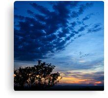 Savannah Sunset Canvas Print