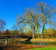 Bridge Over Starkweather Creek by wiscbackroadz