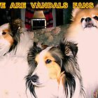 GO  VANDALS by 3DOGNIGHT