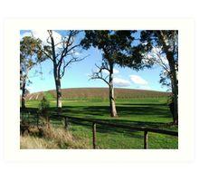 Vineyard View 2 Art Print