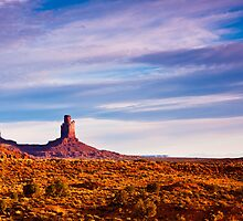 Monument Valley Desert by Nickolay Stanev