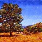 California Summer Oak by sesillie