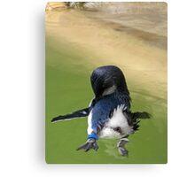 Penguin ballet Canvas Print