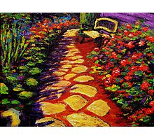 Bench & Stone Garden Pathway Photographic Print