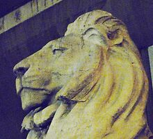 NY library lion by MischaC