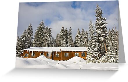 Wuksachi Lodge by Nickolay Stanev