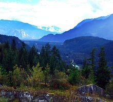 Coast Mountains,B.C. by George Cousins