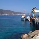Catalina Dock by Walt Conklin