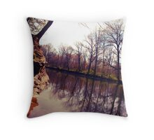 Skewy square format photo Throw Pillow