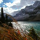 Bow Lake in Fall by Gerry Danen