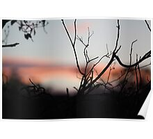 Distant Sunset Poster