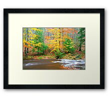 Sumac Creek  Framed Print
