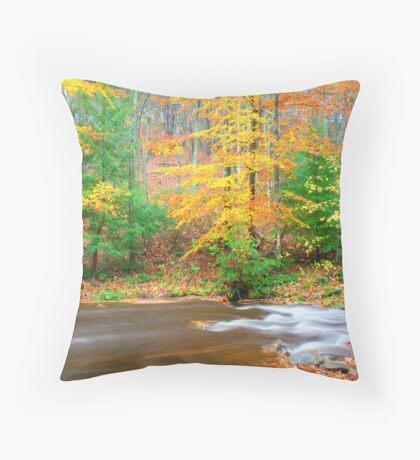 Sumac Creek  Throw Pillow